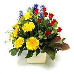 Kırklareli çiçek yolla  9 adet gül ve kir çiçekleri cam yada mika vazoda