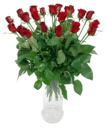 Kırklareli hediye sevgilime hediye çiçek  11 adet kimizi gülün ihtisami cam yada mika vazo modeli