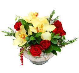 Kırklareli anneler günü çiçek yolla  1 adet orkide 5 adet gül cam yada mikada