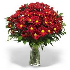 Kırklareli 14 şubat sevgililer günü çiçek  Kir çiçekleri cam yada mika vazo içinde