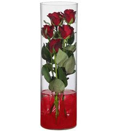 cam içerisinde 7 adet kirmizi gül  Kırklareli çiçek yolla , çiçek gönder , çiçekçi