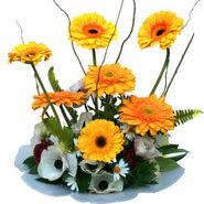 camda gerbera ve mis kokulu kir çiçekleri  Kırklareli hediye sevgilime hediye çiçek