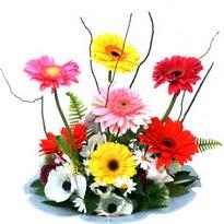 Kırklareli kaliteli taze ve ucuz çiçekler  camda gerbera ve mis kokulu kir çiçekleri