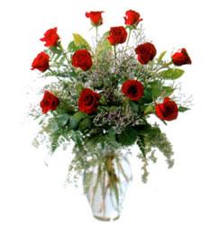 Vazo içerisinde 11 kirmizi gül  Kırklareli çiçek gönderme sitemiz güvenlidir