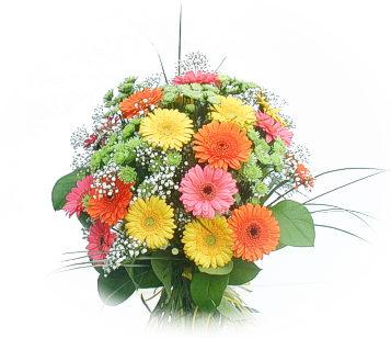 13 adet gerbera çiçegi buketi  Kırklareli çiçek yolla