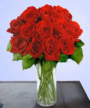 Anneme 12 adet cam içerisinde kirmizi gül  Kırklareli yurtiçi ve yurtdışı çiçek siparişi
