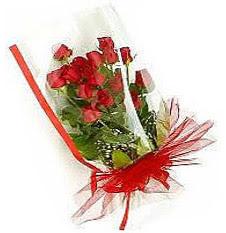 13 adet kirmizi gül buketi sevilenlere  Kırklareli çiçek gönderme sitemiz güvenlidir
