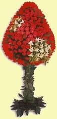 Kırklareli anneler günü çiçek yolla  dügün açilis çiçekleri  Kırklareli çiçekçi mağazası
