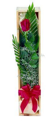 1 adet kutuda kirmizi gül  Kırklareli uluslararası çiçek gönderme