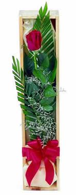 Sade ve gösterisli kutu içerisinde tek gül  Kırklareli güvenli kaliteli hızlı çiçek