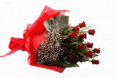 Kırklareli yurtiçi ve yurtdışı çiçek siparişi  11 adet kirmizi gül buketi çiçekçi