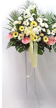 Kırklareli çiçek yolla   perförje çiçegi dügün çiçekleri