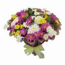 Kırklareli hediye sevgilime hediye çiçek  Mevsim kir çiçegi demeti