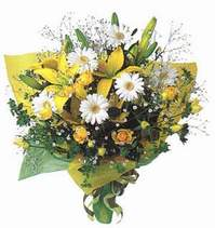 Kırklareli çiçek mağazası , çiçekçi adresleri  Lilyum ve mevsim çiçekleri