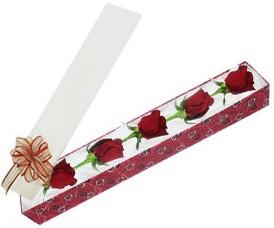 Kırklareli online çiçekçi , çiçek siparişi  kutu içerisinde 5 adet kirmizi gül
