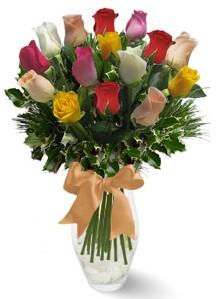 15 adet vazoda renkli gül  Kırklareli online çiçekçi , çiçek siparişi