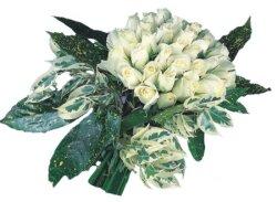 Kırklareli İnternetten çiçek siparişi  9 Beyaz gül Özel kisiler için