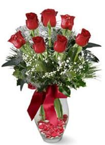 Kırklareli İnternetten çiçek siparişi  7 adet kirmizi gül cam vazo yada mika vazoda