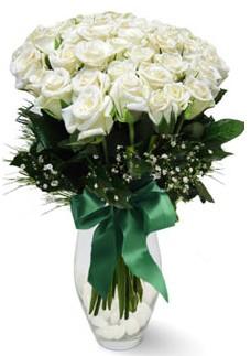 19 adet essiz kalitede beyaz gül  Kırklareli çiçek yolla , çiçek gönder , çiçekçi