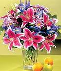 Kırklareli internetten çiçek satışı  Sevgi bahçesi Özel  bir tercih
