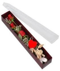 kutu içerisinde 3 adet gül ve oyuncak  Kırklareli çiçekçi telefonları