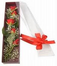 kutu içinde 5 adet kirmizi gül  Kırklareli İnternetten çiçek siparişi