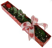 Tek kirmizi gül kutu içerisinde  Kırklareli internetten çiçek siparişi