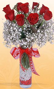 9 adet kirmizi gül cam yada mika vazoda  Kırklareli internetten çiçek satışı