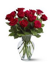 Kırklareli uluslararası çiçek gönderme  cam yada mika vazoda 10 kirmizi gül