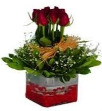 Kırklareli anneler günü çiçek yolla  7 adet mika yada cam vazoda gül tanzimi