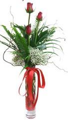 Kırklareli yurtiçi ve yurtdışı çiçek siparişi  3 adet kirmizi gül vazo içerisinde