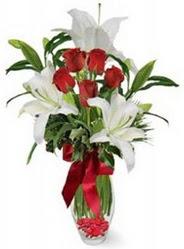 Kırklareli çiçek gönderme sitemiz güvenlidir  5 adet kirmizi gül ve 3 kandil kazablanka