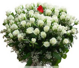 Kırklareli online çiçekçi , çiçek siparişi  100 adet beyaz 1 adet kirmizi gül buketi