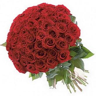 Kırklareli internetten çiçek siparişi  101 adet kırmızı gül buketi modeli