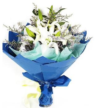 Kırklareli ucuz çiçek gönder  4 adet dal kazablankadan görsel buket
