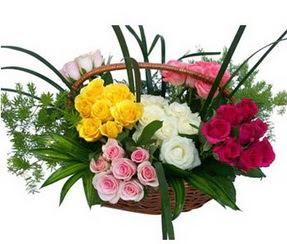 Kırklareli çiçek mağazası , çiçekçi adresleri  35 adet rengarenk güllerden sepet tanzimi