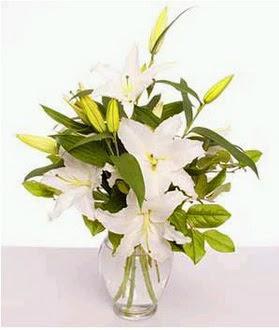 Kırklareli anneler günü çiçek yolla  2 dal cazablanca vazo çiçeği