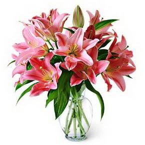 3 dal kazablanka görsel vazosu  Kırklareli İnternetten çiçek siparişi