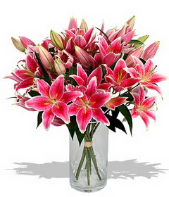 4 dal cazablanca görsel vazosu  Kırklareli güvenli kaliteli hızlı çiçek