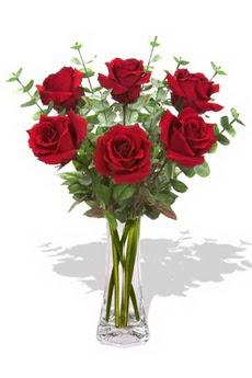 Kırklareli güvenli kaliteli hızlı çiçek  6 kırmızı gül vazosu