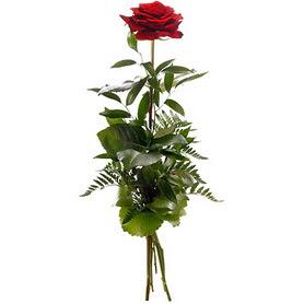 Kırklareli online çiçek gönderme sipariş  1 adet kırmızı gülden buket