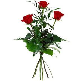 Kırklareli çiçek satışı  3 adet kırmızı gülden buket