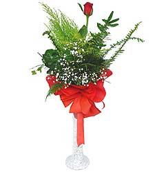 Kırklareli ucuz çiçek gönder  Cam vazoda masum tek gül
