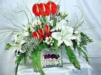 Kırklareli internetten çiçek satışı  Anthurim Kazablanka  gül