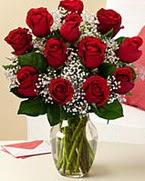 Sevgilime hediye 9 adet 1.ci kalite gül  Kırklareli ucuz çiçek gönder