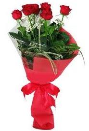Çiçek yolla sitesinden 7 adet kırmızı gül  Kırklareli online çiçekçi , çiçek siparişi