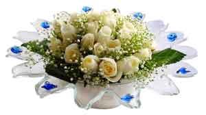 Kırklareli çiçekçi mağazası  11 adet Beyaz güller özel cam tanzim