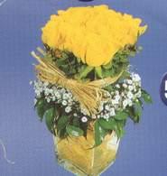 Kırklareli ucuz çiçek gönder  Cam vazoda 9 Sari gül