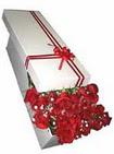Kırklareli hediye sevgilime hediye çiçek  11 adet 1.kalite magnum güller