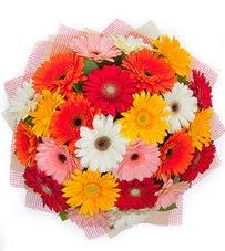 15 adet renkli gerbera buketi  Kırklareli çiçek siparişi vermek